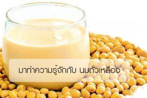 มาทำความรู้จักกับ นมถั่วเหลือง มีประโยชน์อย่างไร