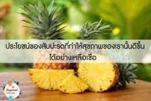 ประโยชน์ของสับปะรดที่ทำให้สุขภาพของเรานั้นดีขึ้นได้อย่างเหลือเชื่อ