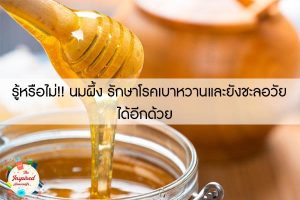 รู้หรือไม่!! นมผึ้ง รักษาโรคเบาหวานและยังชะลอวัยได้อีกด้วย